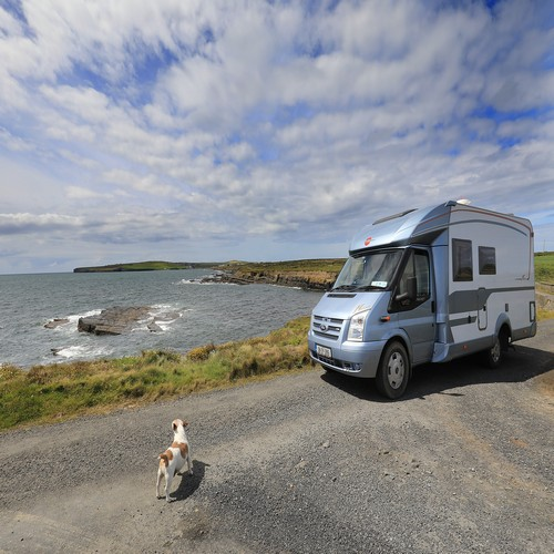 Caravan holiday with dog
